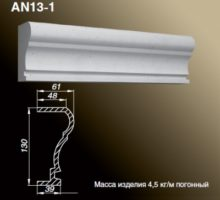 AN13-1