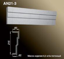 AN21-3