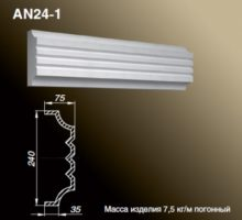 AN24-1