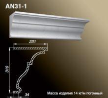 AN31-1